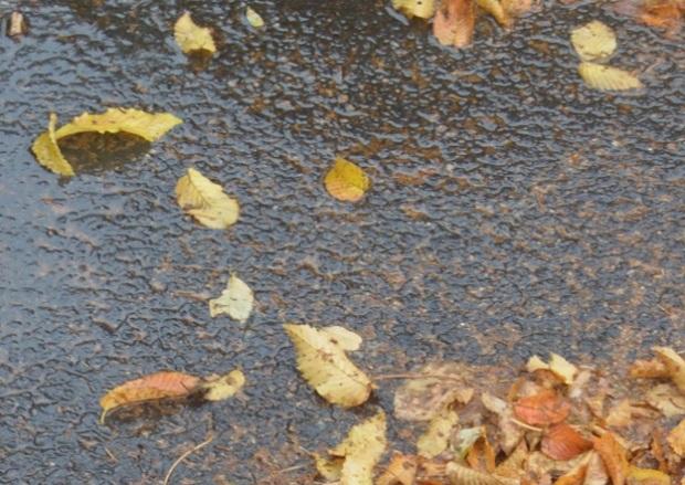 hujan_di_soreitu