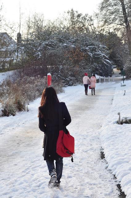 snow_nott